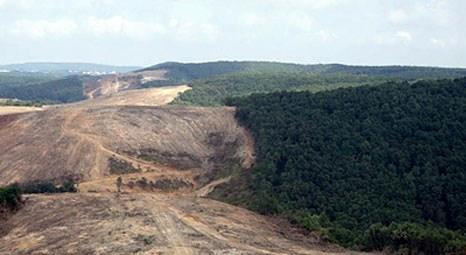 Kuzey Marmara Otoyolu ve 3. Köprü yapımı için 2.7 milyon ağaç kesilecek!