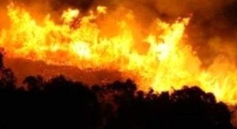 Bursa Uludağ'da orman yangını meydana geldi