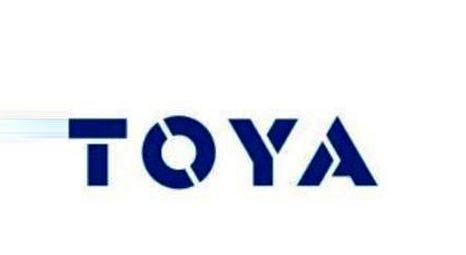 Toya Gayrimenkul takım arkadaşları arıyor