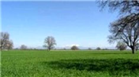 Hazineye ait tarım arazilerinin satışı 6 ay uzatıldı