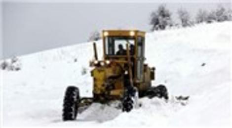Van'da kardan dolayı kapanan yollar ulaşıma açılıyor