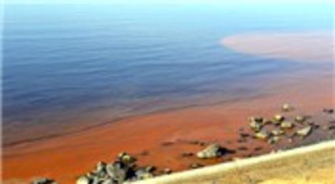 Zonguldak'ın Alaplı ve Düzce sahillerindeki kızıl tabaka Ereğli'de de görüldü