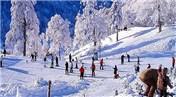 Kartepe'de beklenen kar turizmcilerin yüzünü güldürdü
