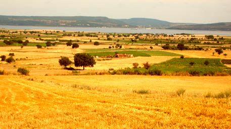 Şırnak'da çözüm süreciyle birlikte 150 bin dekar arazi tarıma kavuştu