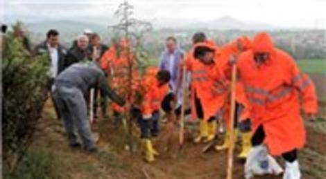 Soma'da hayatını kaybedenler için hatıra ormanı oluşturuluyor