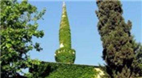 Adana'daki çevreci cami görüntüsü ile dikkat çekiyor
