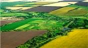 Tarım arazilerinin akıbeti ne olacak? Detaylar belli oldu!