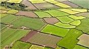 Mehdi Eker '4.5 milyon dönüm tarım arazisi kurtarıldı'