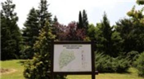 Belgrad Ormanı'ndaki Atatürk Arboretumu çekim mekanı oldu