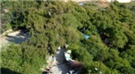 Hatay'daki Harbiye Şelaleleri, kuraklıktan etkilendi