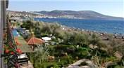 İzmir Dikili'de 2 milyon 413 bin liraya icradan satılık 2 tarla