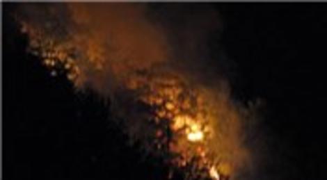 Abant'taki orman yangını kontrol altına alındı