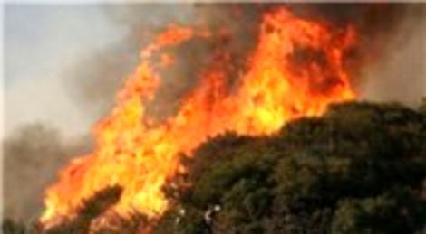 Elazığ'daki orman yangını kontrol altına alındı!