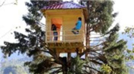 Uyy! Hemşin'de çam ağacına ev yaptı