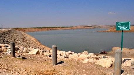 Kuraklık, barajdaki doğal yaşamı tehdit ediyor