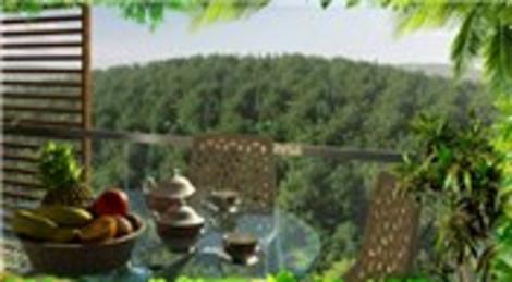 Resim İstanbul Orman'ın iç mekanından kareler için tıklayın!