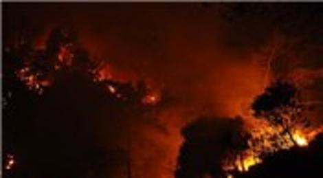 Marmaris'teki orman yangını korkuttu! Söndürme çalışmaları...