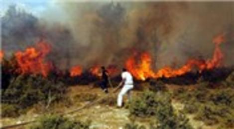 Muğla'da orman ve zirai alan yangını ile…