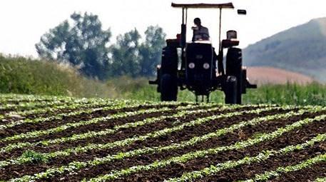 Tarım arazilerine Büyükova projesi ile dokunulmazlık geliyor!