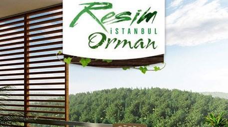 Resim İstanbul Orman iletişim bilgileri...