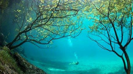 Bu doğal su altı parkına inanamayacaksınız!
