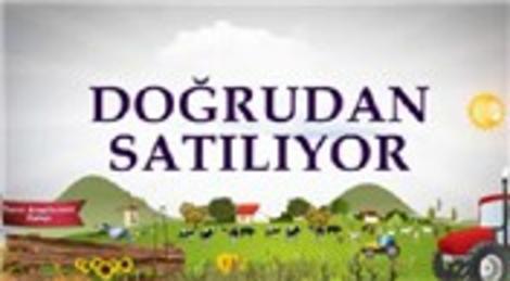 Hazine'ye ait tarım arazileri satışa çıkarıldı!