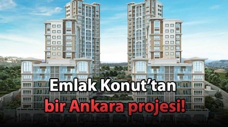 Ankara'nın en değerlisi Sofa Loca satışa çıktı