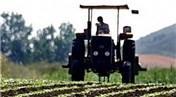 Çiftçiye hibe desteği geliyor!