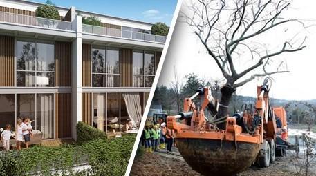 Köy'de Türkiye'nin en büyük ağaç taşıma operasyonu başladı
