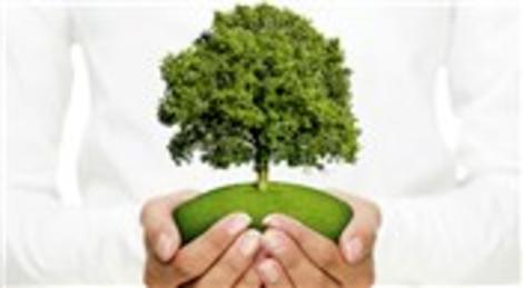 Evinizi Hep İstanbul'dan alın, 3 dikili ağacınız olsun!