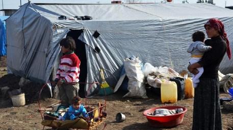Yüreğir Belediyesi, Suriyeli sığınmacılara çadır kent kuruyor