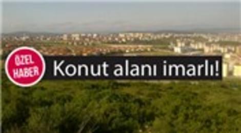 Kurtköy'deki o dev arazi satışa çıktı!