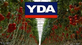 İnşaatçı YDA, organik domates için kolları sıvadı