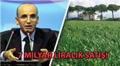 Mehmet Şimşek, 2B arazilerindeki son rakamları açıkladı