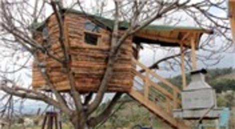 Evinin bahçesinde torunu için ağaç ev yaptı!