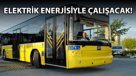 Yerli otobüs