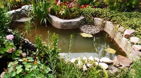 Bu bahçeler komşularınızı çok kıskandıracak!