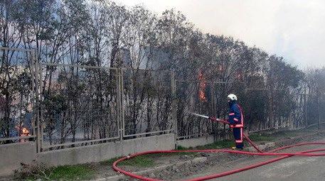 Esenyurt'taki o fabrikada yangın çıktı!