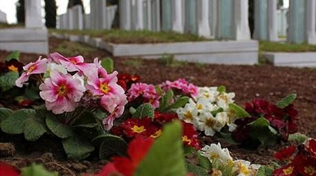 Şehitlik abideleri 40 bin çiçekle renklendirildi!