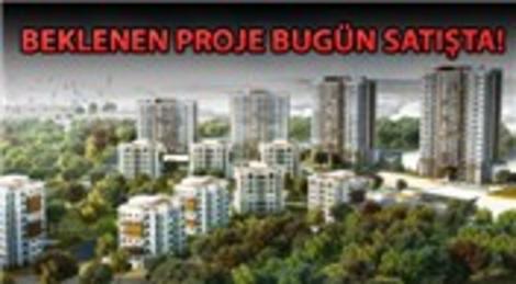 Vadişehir Başakşehir için büyük gün!