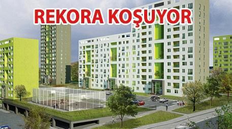 TOKİ Kayaşehir'e bir haftada 37 bin başvuru geldi!
