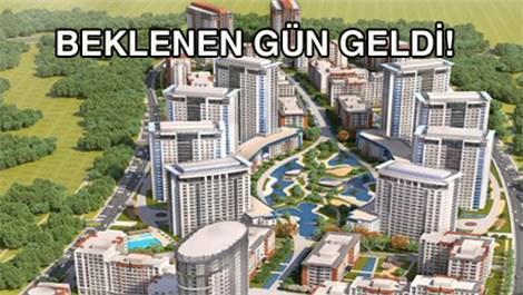 Tema İstanbul'da yaşam başlıyor!