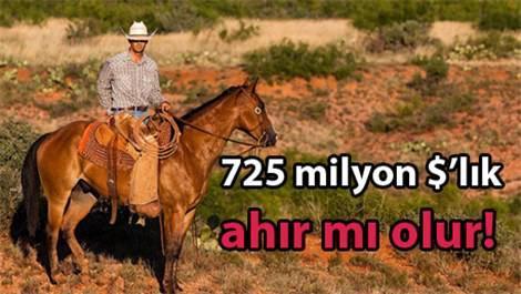 Dünyanın en pahalı emlağında sığırlar yaşıyor