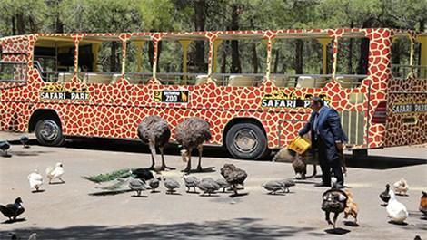 gaziantep,hayvanat bahçesi