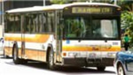 Hawaii'de eski otobüsler evsizlere barınak oluyor
