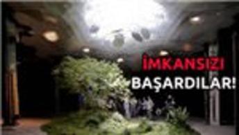 İşte dünyanın ilk yeraltı parkı!