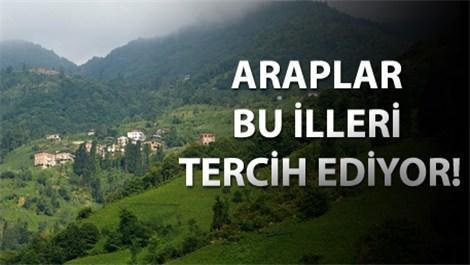 yemyeşil ormanlar çevrili Trabzon