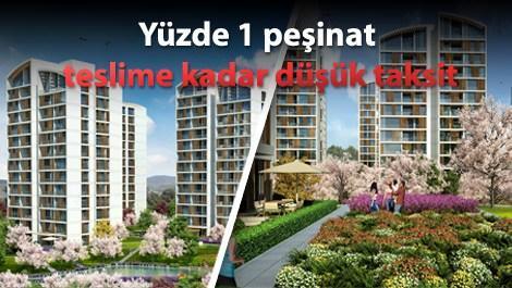 Resim İstanbul Orman