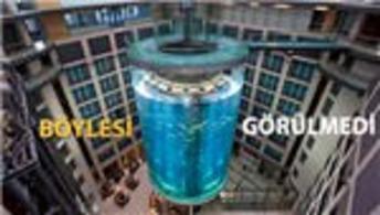 İşte dünyanın en büyük silindir akvaryumu