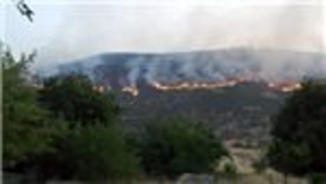 Bingöl'deki orman yangını köyleri tehdit ediyor